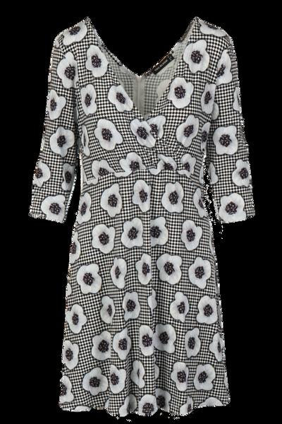 Image of Chamaepericlymenum dress D61