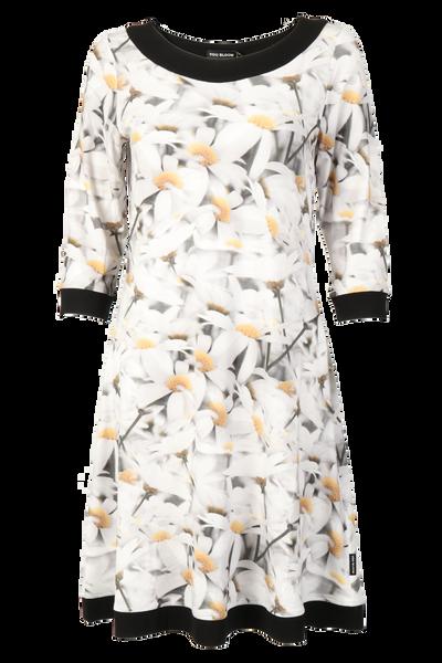 Image of Argyranthemum white dress D5