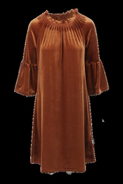 Image of Roberta rust velvet dress