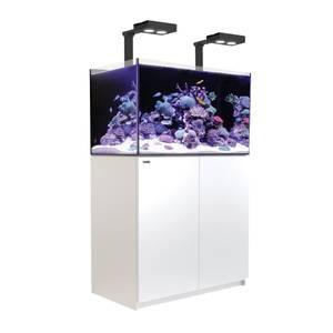 Bilde av Red Sea Reefer Deluxe 250 hvit
