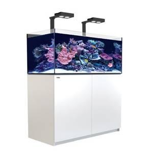 Bilde av Red Sea Reefer Deluxe XL 425 Hvit