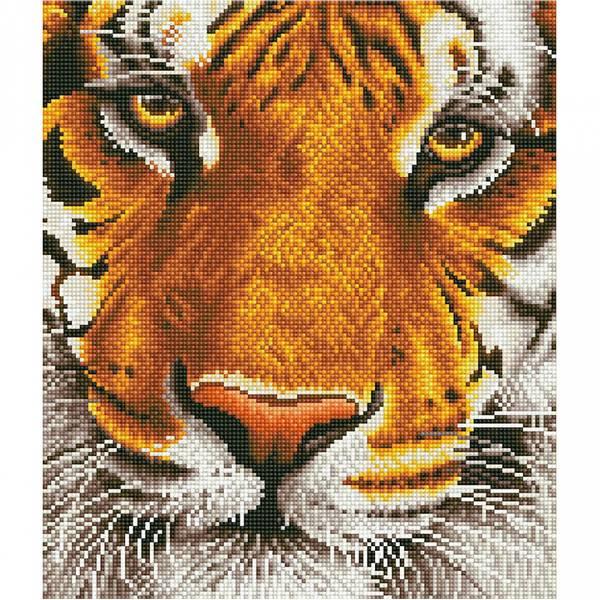 Diamond Dotz, Bengal Magic Tiger