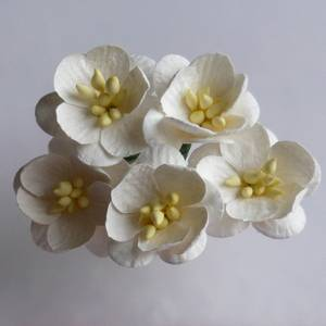 Bilde av Flowers - Cherry Blossom - Saa-057 - Ivory - 50stk