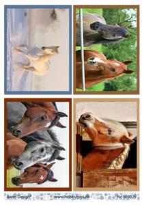 Bilde av Barto Design - Klippeark A4 - 069029 - Horses