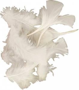 Bilde av Fjær - Kalkun dun - Hvit - ca 20 stk