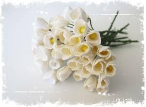 Bilde av Papirdesign - Tulipaner - Hvit