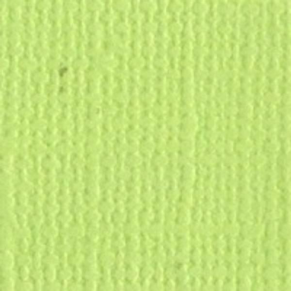 Bazzill - Mono - 5-509 - Limeade