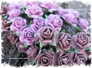 Bilde av Papirdesign - Roser - 1,2cm - Vintage rosa
