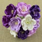 WOC - Magnolias & Lotus
