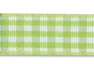 Bilde av Din fantasi - Bånd - 10mm - Rutet - 36 - Lys grønn - 10 meter