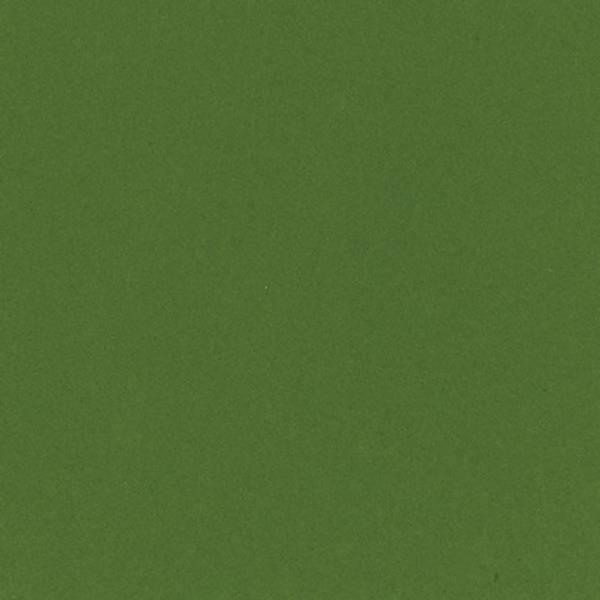 Bazzill - Smoothies - T5-5126 - Kiwi Crush - 302224