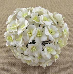 Bilde av Flowers - Apple Blossom - Saa-360 - White - 50stk