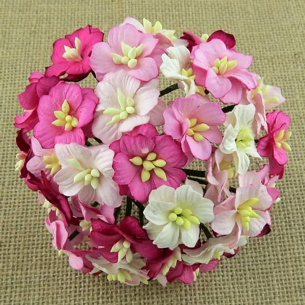 Flowers - Apple Blossom - Saa-417 - Mixed Pink - 50stk