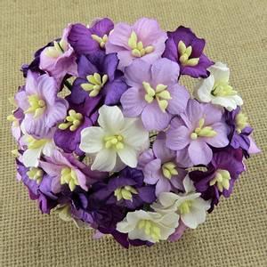 Bilde av Flowers - Apple Blossom - Saa-418 - Mixed Purple - 50stk