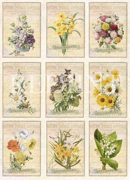 Reprint -  A4 Klippeark - KP0059 - Vintage Easter - Flowers