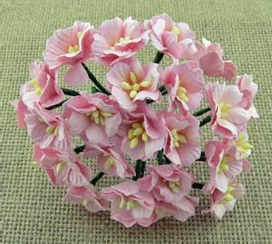 Bilde av Flowers - Apple Blossom - Saa-465 - Light Pink - 50stk