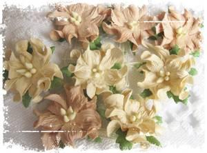 Bilde av Papirdesign - Gardenia, små - Beige