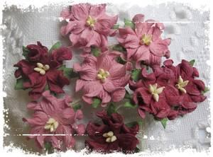 Bilde av Papirdesign - Gardenia, små - Gammelrosa