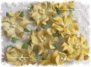 Bilde av Papirdesign - Gardenia, små - Gul