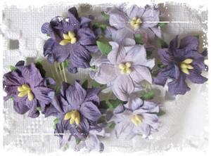 Bilde av Papirdesign - Gardenia, små - Lys lilla