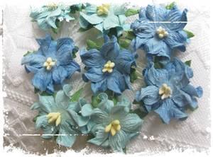 Bilde av Papirdesign - Gardenia, små - Mellomblå