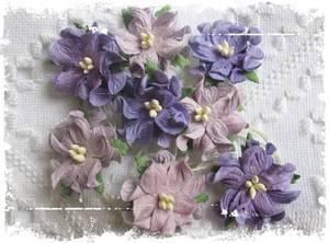 Bilde av Papirdesign - Gardenia, små - Mørk lilla
