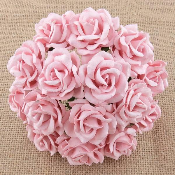 Flowers - Chelsea Roses - Saa-449 - Pale Pink - 50stk