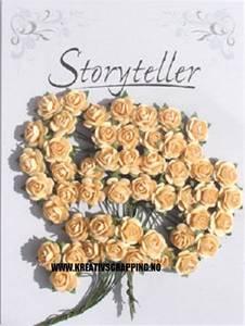 Bilde av Storyteller - Rose - Aprikos - 14mm - 1487