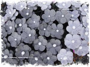 Bilde av Papirdesign - Søte blomster grå