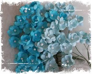 Bilde av Papirdesign - Søte blomster turkis