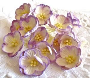 Bilde av Papirdesign - Kirsebærblomst - lys lilla