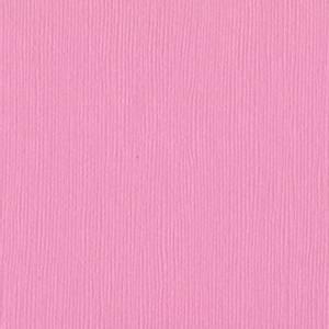 Bilde av Bazzill - Fourz (Grass Cloth) - 1-129 - Fussy