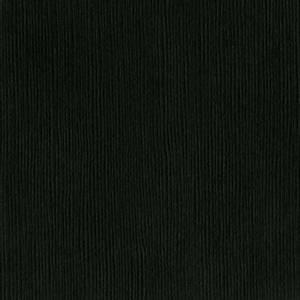Bilde av Bazzill - Fourz (Grass Cloth) - 10-1037 - Blackbird