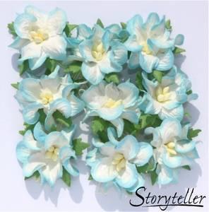 Bilde av Storyteller - Gardenia små - Blå kant - 3498