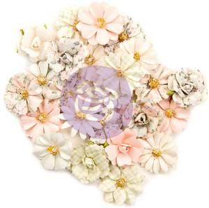 Bilde av Prima - 637484 - Flowers - Poetic Rose - Elaborate Love