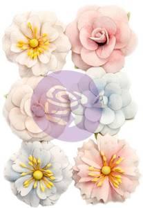 Bilde av Prima - 637378 - Flowers - Poetic Rose - Roses For You
