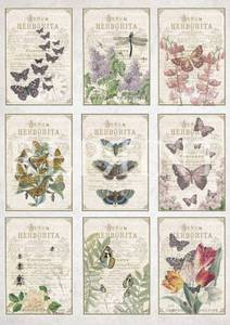 Bilde av Reprint -  A4 Klippeark - KP0064 - In the Garden - Butterflies
