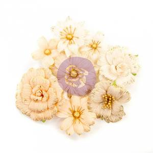 Bilde av Prima - 637576 - Flowers - Pretty Pale - Honeycomb