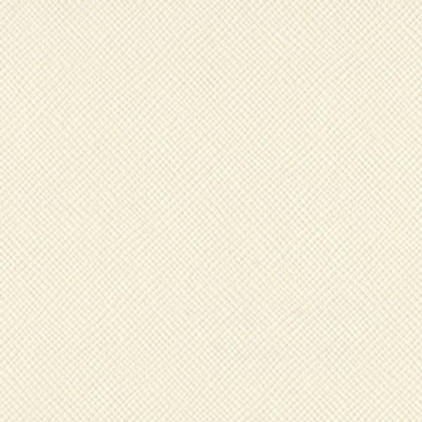 Bazzill - Mono - 8-804 - Cream Puff