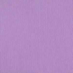 Bilde av Bazzill - Fourz (Grass Cloth) - 6-663 - Lupine