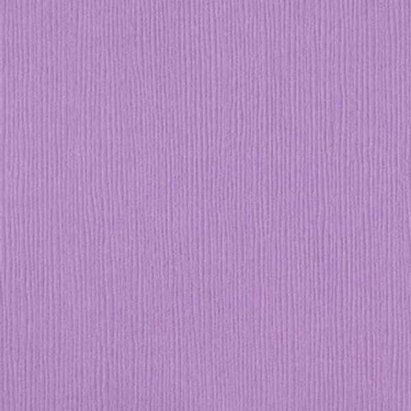 Bazzill - Fourz (Grass Cloth) - 6-663 - Lupine