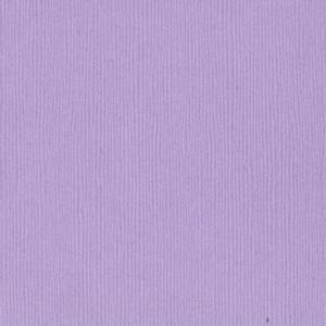 Bilde av Bazzill - Fourz (Grass Cloth) - 6-651 - Purple Palisades