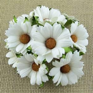 Bilde av Flowers - Chrysanthemums - SAA-467 - White - 50stk