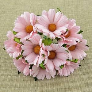 Bilde av Flowers - Chrysanthemums - SAA-473 - Pale Pink - 50stk