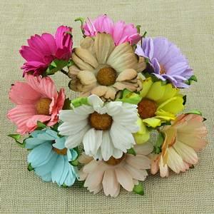 Bilde av Flowers - Chrysanthemums - SAA-355 - Mixed Colour - 50stk