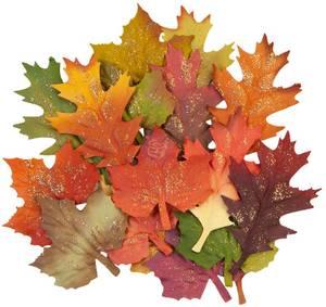 Bilde av Prima - 648367 - Flowers - Pumpkin & Spice - Fall Leaves