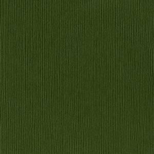 Bilde av Bazzill - Fourz (Grass Cloth) - 5-5104 - Rain Forest