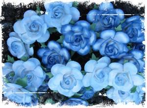 Bilde av Papirdesign - Roser - 2,5cm - Farget kant - Blå