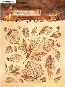 Bilde av Studiolight - 483 - Stamps - 14x14 - Wonderful Autumn