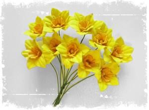 Bilde av Papirdesign - Påskeliljer , små